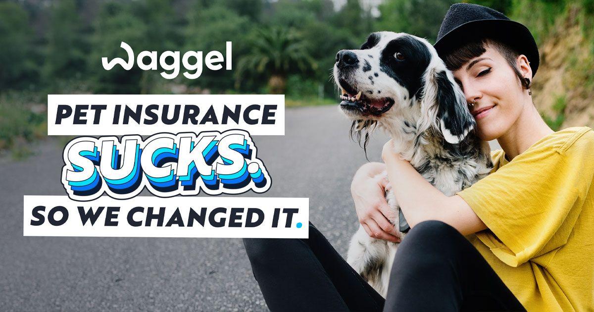 www.waggel.co.uk